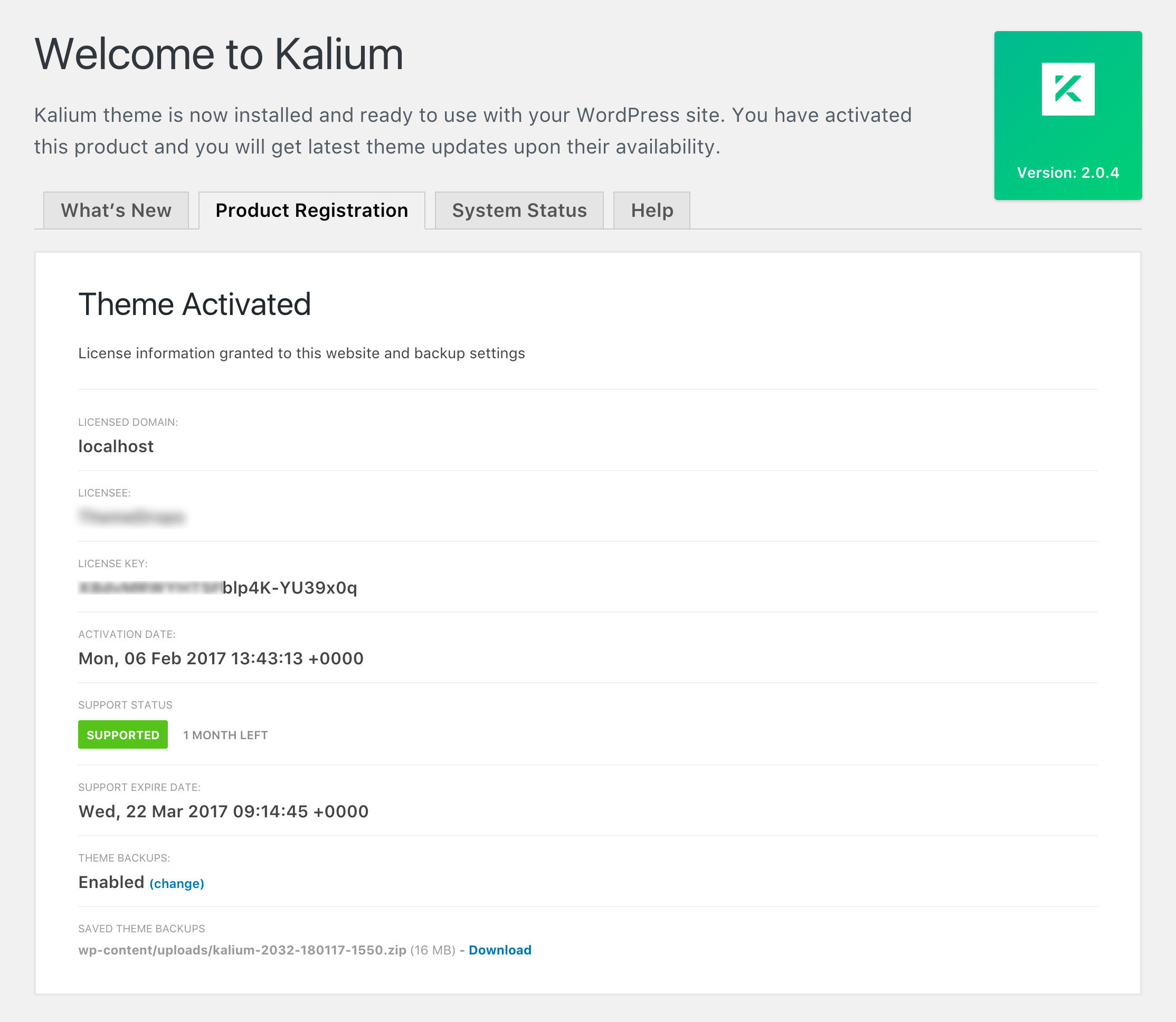 Activating the theme – Documentation